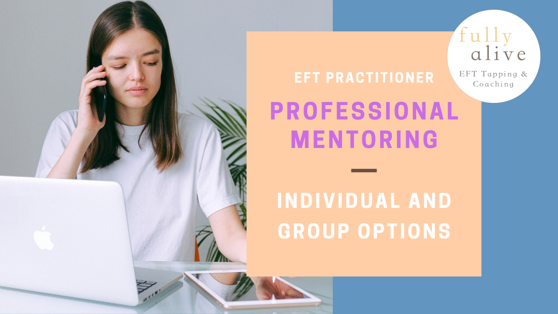 Professional mentoring for EFT Practioners - Individual and group mentoring options (flyer text)